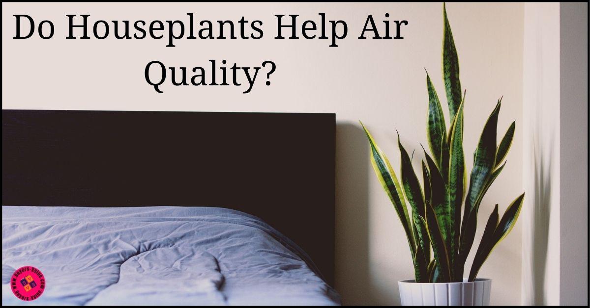 Do houseplants help air qualityDo houseplants help air quality