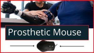 Prosthetic Mouse